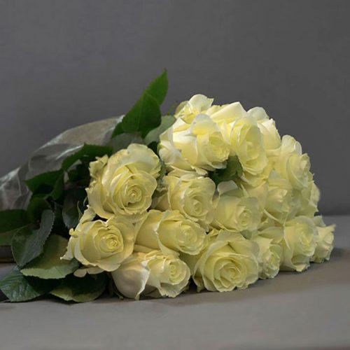 Cvjećarnica Fani_Prvoklasne bijele ruže