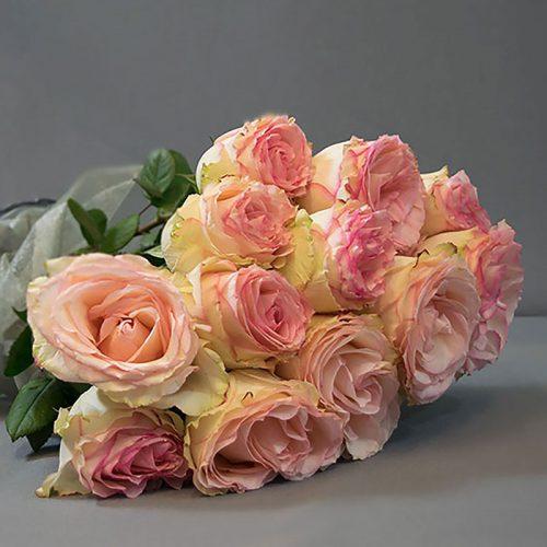 Cvjećarnica Fani_Prvoklasne ružičaste ruže