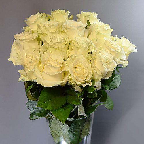 Cvjećarnica Fani_Rezano cvijeće_Bijele ruže