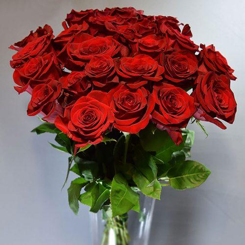 Cvjećarnica Fani_Rezano cvijeće_Crvene ruže
