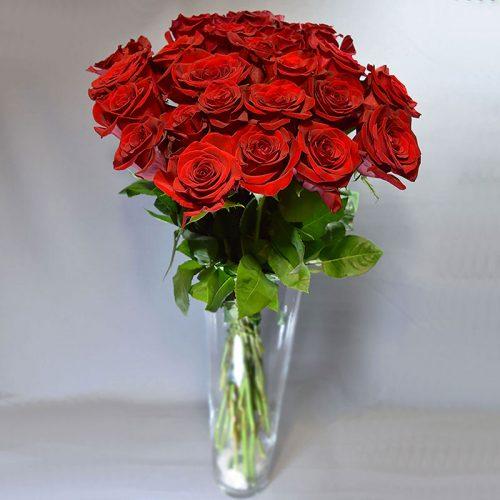 Cvjećarnica Fani_Rezano cvijeće_Crvene ruže_