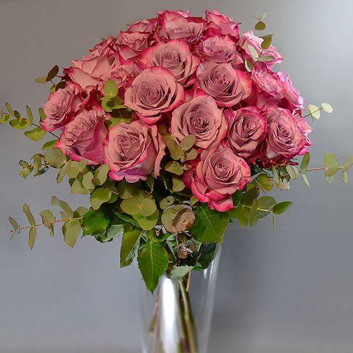 buket-ljubičaste-ruže-sa-zelenilom