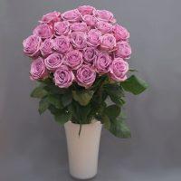 Cvjećarnica Fani_Rezano cvijeće_Ljubičaste ruže_