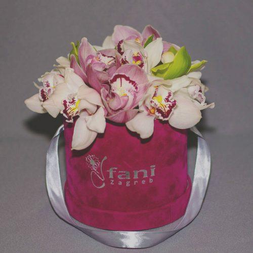 Cvjećarnica-Fani_Flowerbox_Orhideje-u-kutiji-