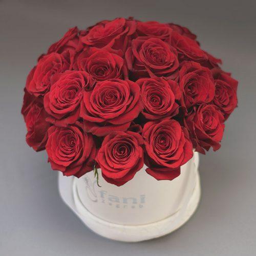flowerbox-ruže-u-kutiji